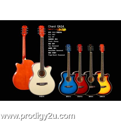 Chard EA14 Acoustic Guitar w 7545EQ Pickup (Package)